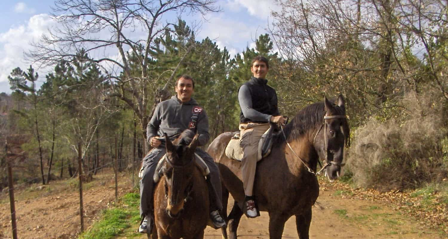 riding horses in andalucia active tourism